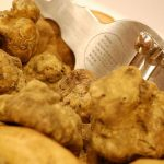 Celebrate the White Truffle